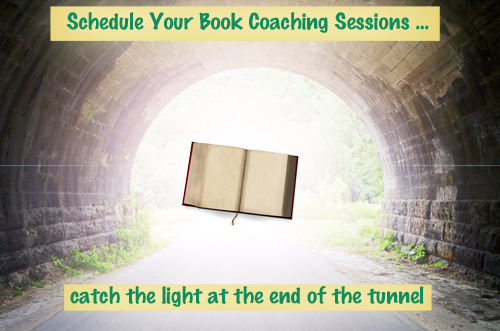 Schedule Your Book Coaching Sessions 500px