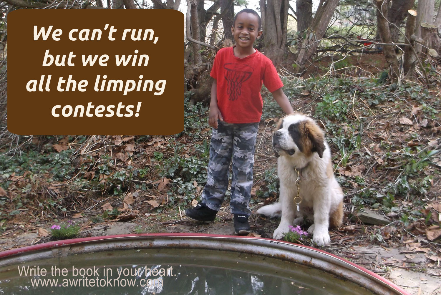 """A boy and a dog standing by a pond with words that say """"We can't run but we win all limping contests."""